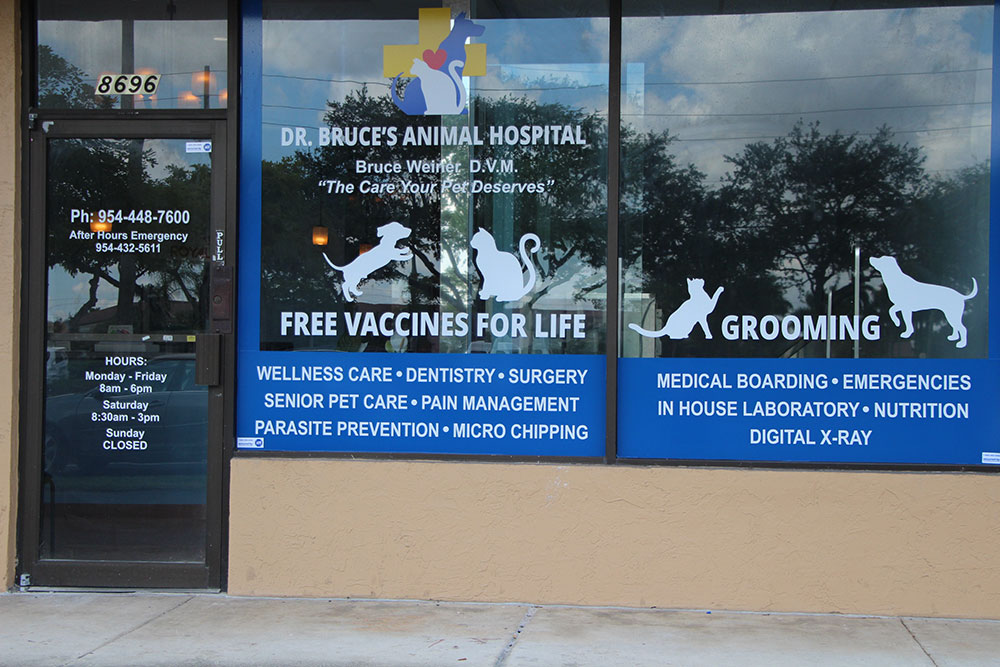 Our Services - About Us | Dr  Bruce's Animal Hospital